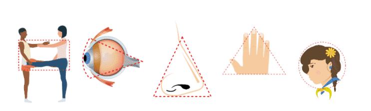 Descubriendo la geometría a partir de nuestro cuerpo